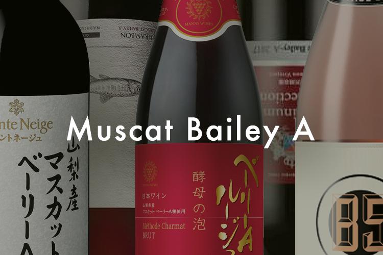 日本ワインの注目品種、「マスカット・ベーリーA」